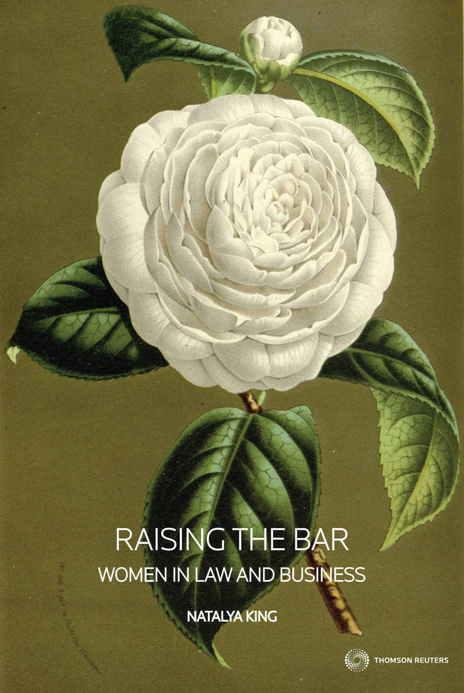 Raising the Bar: Women in Law and Business (eBook)